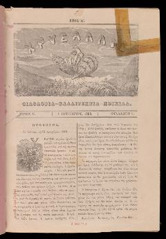 chrysallis1863jpg